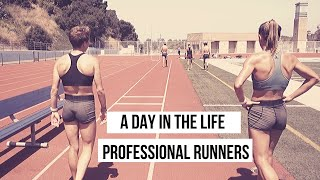 A Day in the Life of Professional Runners - Golden Coast Track Club