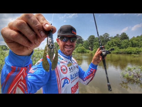 How to Find and Catch Bass in Flooded Bushes