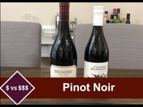 $4 Vs. $20 Pinot Noir (cheap vs expensive wine)