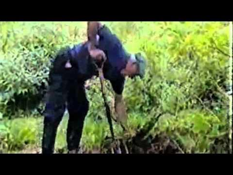 Le jardin foret par robert hart 1 2 vostf youtube for Jardin foret