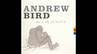Andrew Bird - Giant of Illinois