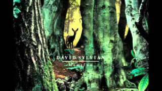 David Sylvian - Manafon