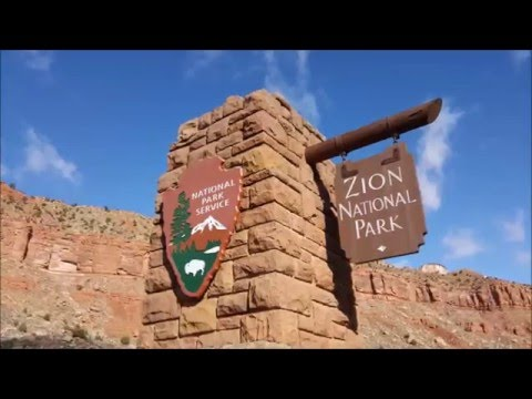 Best Tips for Hiking Zion National Park In the Winter Emerald Pools