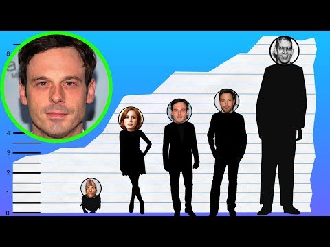 How Tall Is Scoot McNairy? - Height Comparison!