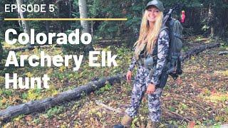 Colorado Archery Elk Hunt Episode 5: Hello Desert Bulls!