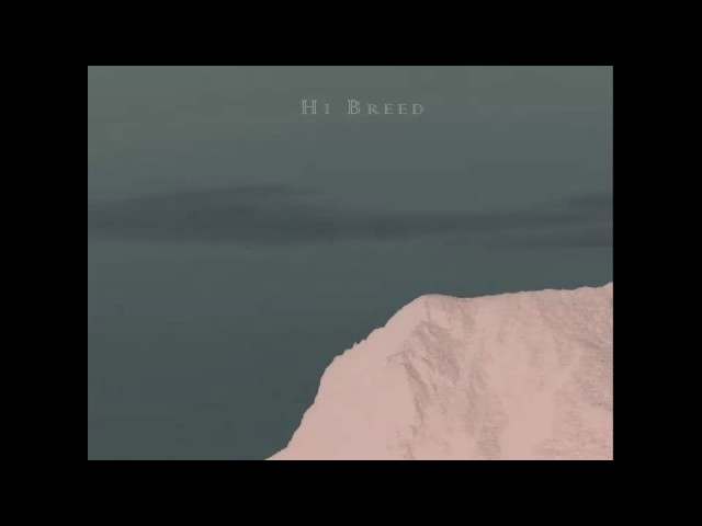 Domingo Caballero - Hi Breed