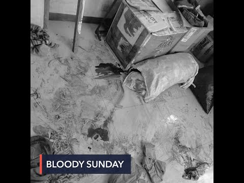 Bloody Sunday: 9 dead, 6 arrested in Calabarzon crackdown on activists