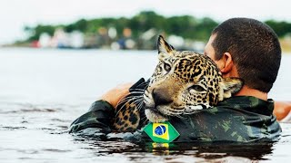 10 Most Inspiring Animal Rescues