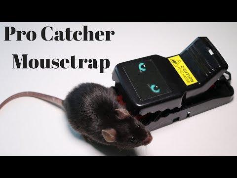The Pro Catcher Mouse Trap.  Mousetrap Monday