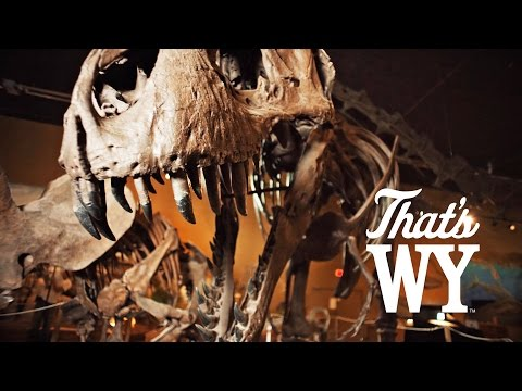 Paleontology in Wyoming - That