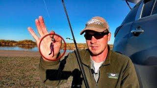 Осенняя рыбалка в октябре Ловля окуня на ультралайт Kola Как ловить окуня осенью