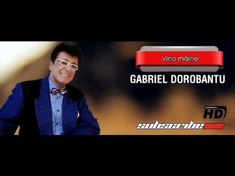 Gabriel Dorobantu - Vino Maine