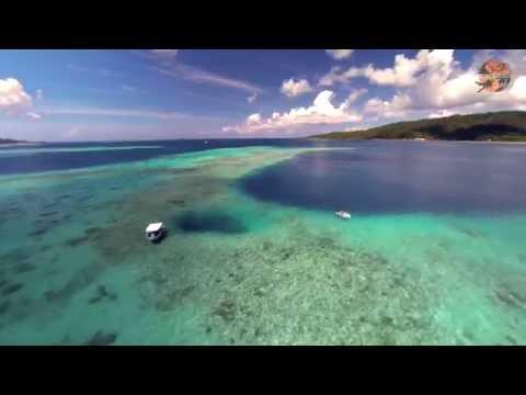 Plongée dans les entrailles du récif coralien de Raiatea et Tahaa - Le trou de la Pieuvre