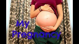 My Pregnancy In a Nutshell | Sarah DeLaurier