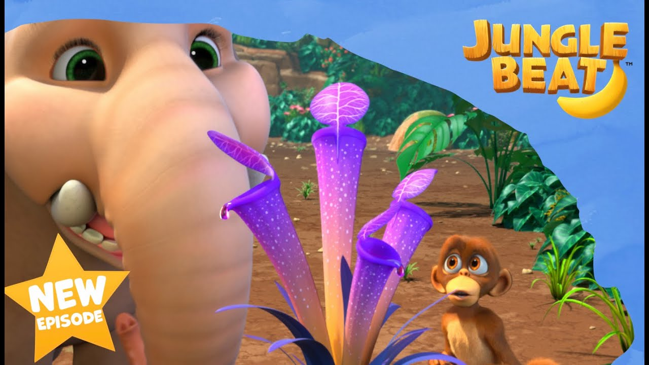 NEW EPISODE! Boing Boing | Jungle Beat: Munki and Trunk | VIDEOS and CARTOONS FOR KIDS 2021