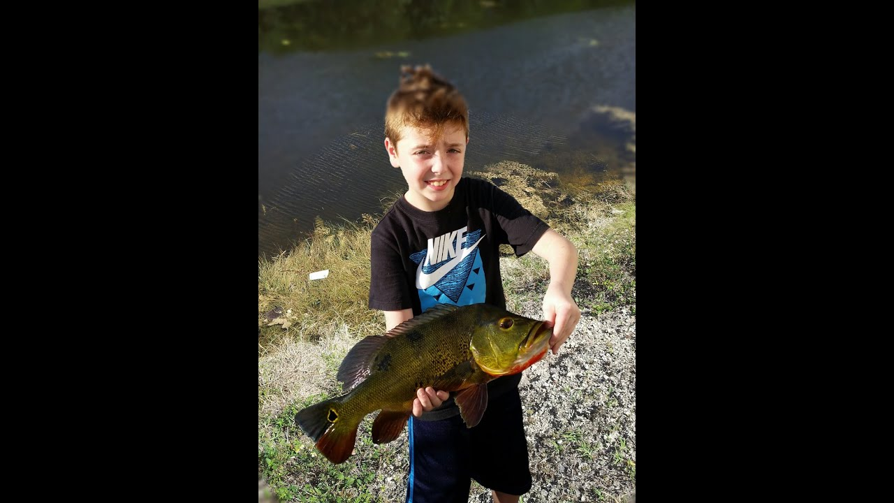Little kid catches big fish peacock bass youtube for Youtube fishing videos big fish