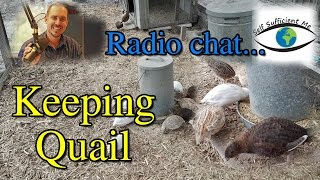 Coturnix Quail Chat Sunshine Coast Radio Podcast Mooloolaba Storm 20 June 2016