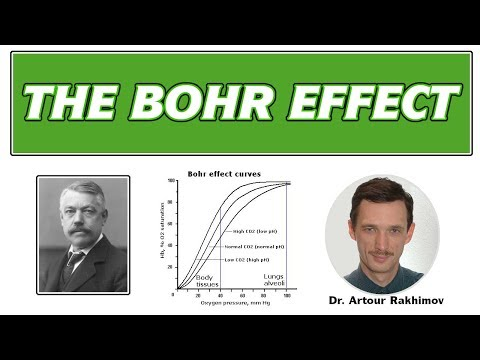 03-B-Bohr Effect: Healthy vs. Sick People and Oxygen Transport