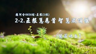 雜阿含0656經-五根(1版)2-2.五根慧為首 智慧滅煩惱[德藏比丘]