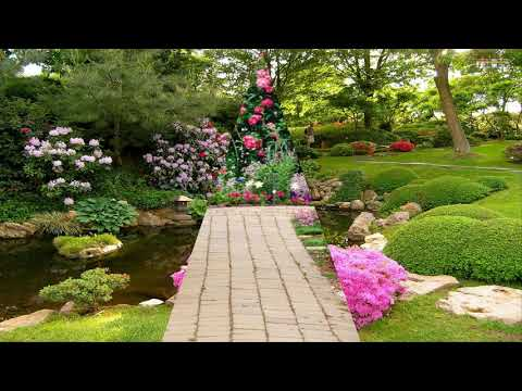 Beautiful Flower Gardens Ideas Beautiful House Youtube