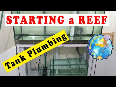 HOW TO: SET UP a Reef Aquarium | Tank Plumbing & overflow (120g Reef Tank Setup E7)  احواض بحرية