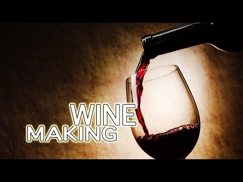 How To Make Wine - The Best!