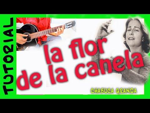Guitarra LA FLOR DE LA CANELA
