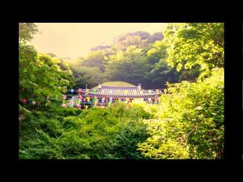 one day tour ancient city of Gyeongju south korea,