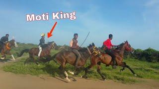 Kutch best horse race   Moti_Veer and Bado  आज मोत गुजरात कींग बना