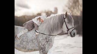 Съемка с лошадьми/уличная фотосессия
