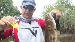 Kit Carretilha Marine Sports + Linha + 30 Iscas Matadeiras
