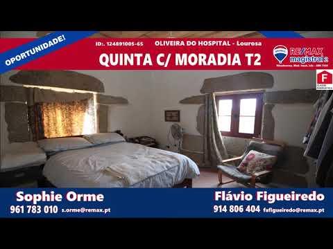 Quinta com Moradia T2 - Oliveira do Hospital - Lourosa