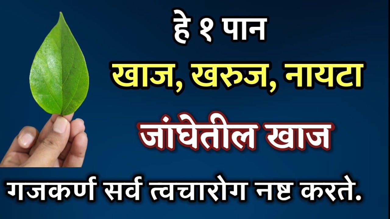 फक्त 1 शेंगदाणा असा वापरा , नायटा व जघेतील खाज गजकर्ण मरेपर्यंत होणारं नाही , nayata gakhakaran upay