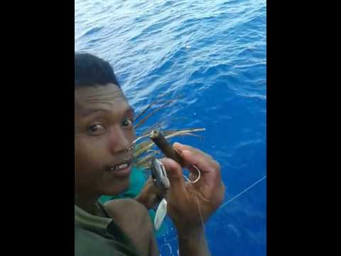 Mancing mania ikan tuna pake layang' umpan bambu