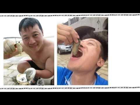 料理鐵人採鮮廚房‧尋找台灣好食材<堅持>篇