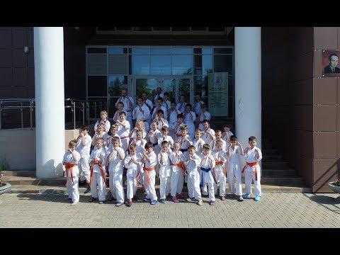 Показательное выступление секции «Каратэ Киокушинкай» на территории школы 1