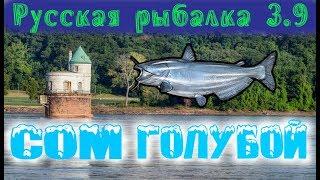 Русская рыбалка 3.9. Сом голубой. Миссисипи.