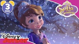 Sofia het Prinsesje | Magisch Moment: Sofia de Beschermer | Disney Junior NL