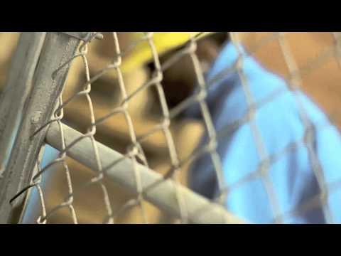 Lil B - Live Online (BOUT MY DOLLAZ) *MUSIC VIDEO* CLASSIC WESTCOAST MUSIC..WORLDWIDE VIBE!