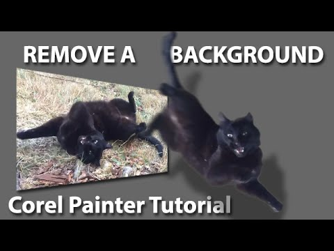 Corel Painter Tutorial - Remove Background From An Image