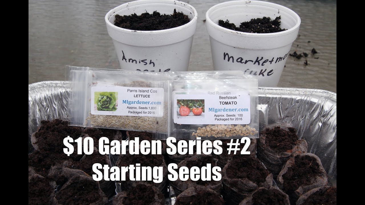 Start Garden Seeds Indoors The 10 garden series 2 how to start seeds indoors youtube workwithnaturefo