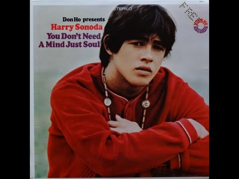 Harry Sonoda / You Don't Need A Mind Just Soul