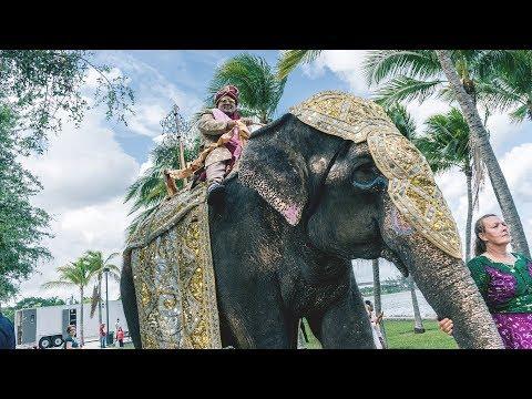 The Great Indian Wedding in Miami   Intercontinental Hotel, Miami   Florida