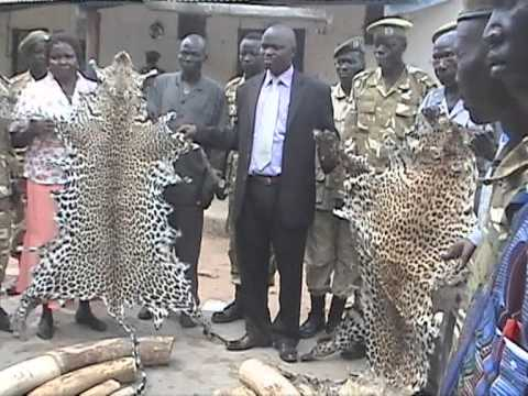 Threat to Wild Life in South Sudan