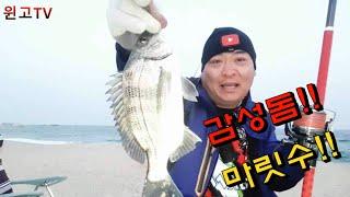 140회 강릉 양양 속초 동해 바다원투낚시 강릉쪽해변 …