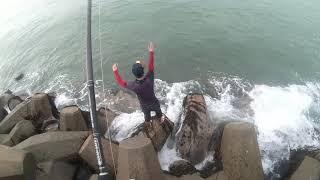 Permit Fish on Hayabusa Shot - Fishing Experience in Oman