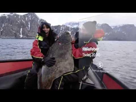 kanal 5 fiskefeber