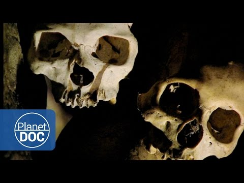Indonesia Full Documentary | Ghosts of Sulawesi