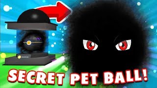 Trouver le PET BALL SECRET et découvrir le PET DARKNESS! (Roblox Pet Trainer Simulator)