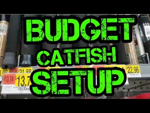 Beginner Catfish Combo And Setup